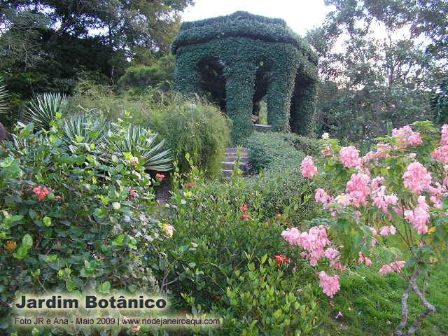 uma sequência de fotos tiradas no Jardim Botânico do Rio de Janeiro