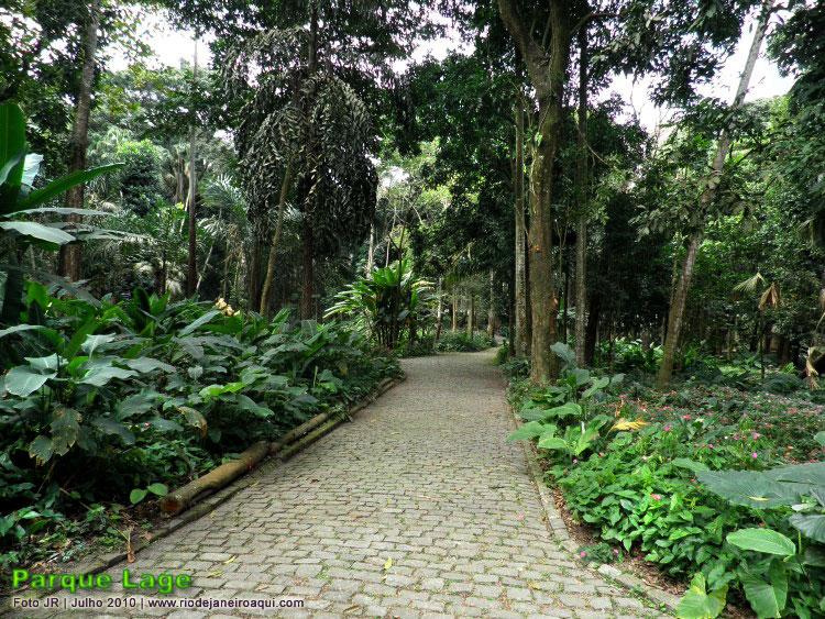 Jardins Que Parecem Uma Floresta Mágica ~ Pedras Para Jardim Rio De Janeiro